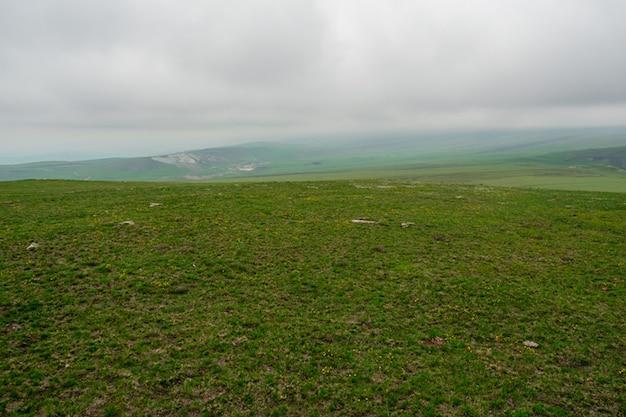 植生がまばらな高地の牧草地。地平線に雨の前線があり、木がなく緑の植物が育つ大きな山岳地帯。