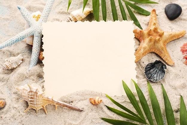 High angle card on sand beside shellfish