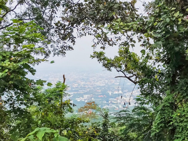 High angle of chiang mai, thailand in picture frame from the tree at view point at doi suthep.