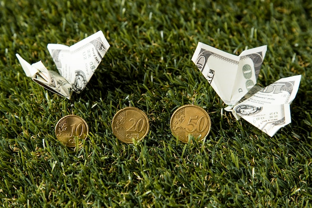 High angle of coins and banknotes in grass