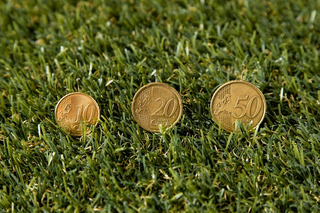 High angle of coins in grass