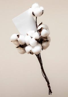 高角度の綿の枝