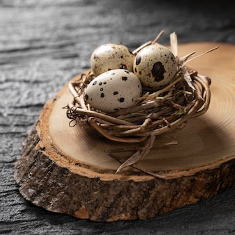 High angle of easter eggs in bird nest on top of wooden plank