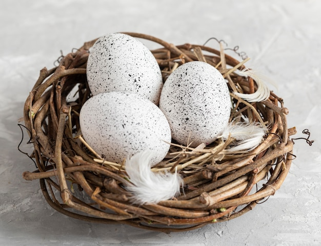 High angle of eggs for easter in bird nest with feathers