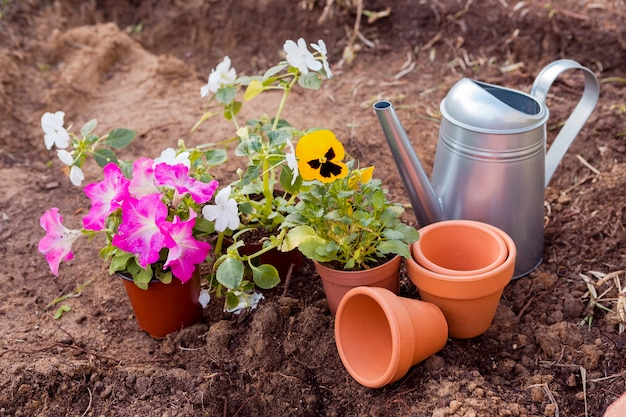 High angle flower pots on soil with tools