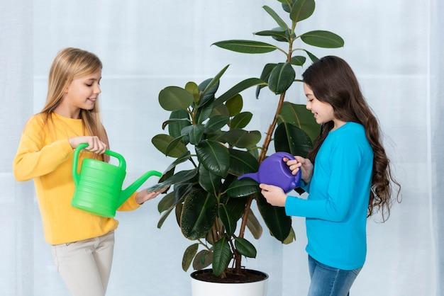 High angle girls watering flowers