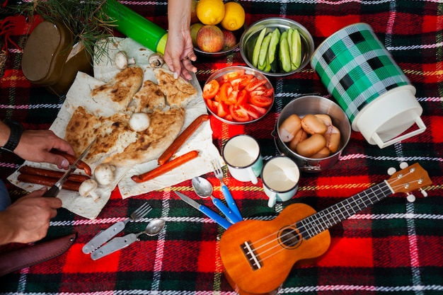 High angle meal time at picnic