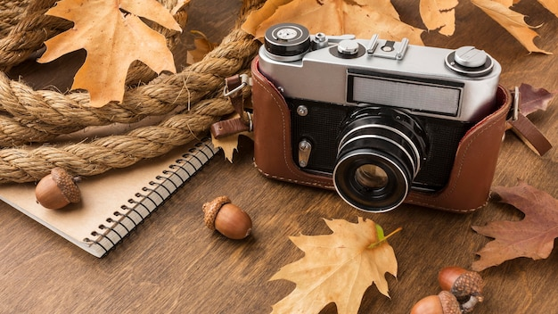 Высокий угол камеры с осенними листьями и желудями