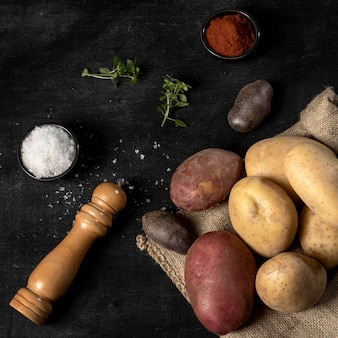 Высокий угол картофеля с солью и специями