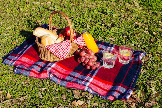 High angle picnic arrangement on grass