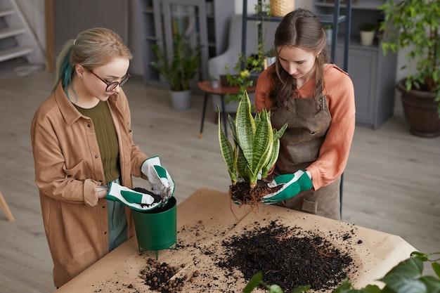 꽃집에서 일하거나 함께 정원을 가꾸면서 식물을 화분에 심는 두 젊은 여성 꽃집의 높은 각도 초상화, 복사 공간