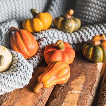 High angle pumpkins on wooden table and blanket