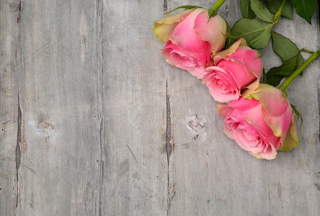 High angle shot of the beautiful pink roses on a wooden surface