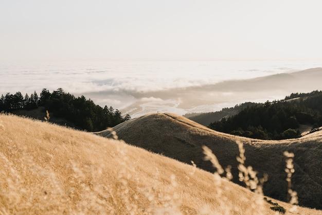 Colpo di alto angolo di colline di diverse dimensioni che circondano l'oceano calmo