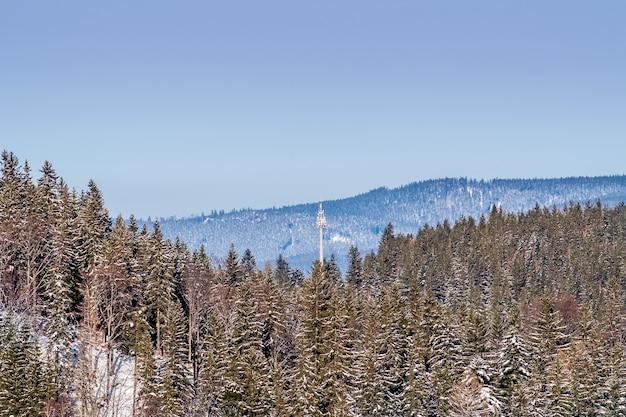 백그라운드에서 맑고 푸른 하늘과 숲이 우거진 산의 높은 각도 샷