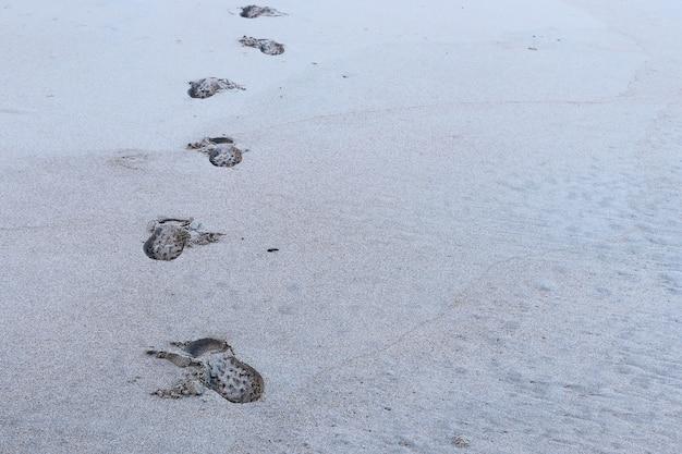 雪に覆われた地面に人の足跡のハイアングルショット