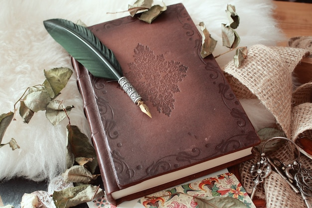 Гусиное перо на старинной книге, покрытой засохшими лепестками цветов, под высоким углом