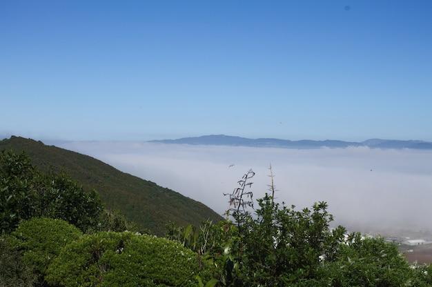 霧に覆われたニュージーランドのハットバレーのハイアングルショット
