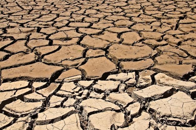 乾燥してひび割れた泥だらけの地面のハイアングルショット