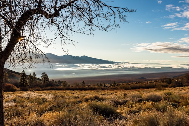 米国カリフォルニア州のオニオンバレーと明るい空のハイアングルショット