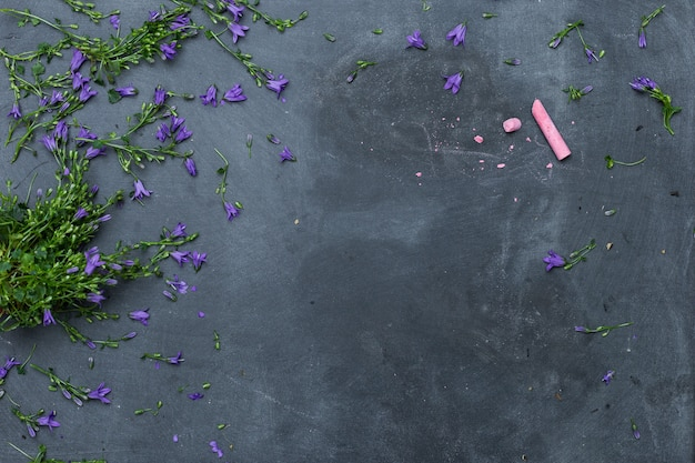 High angle shot of purple flowers spread on a black surface with a pink chalk