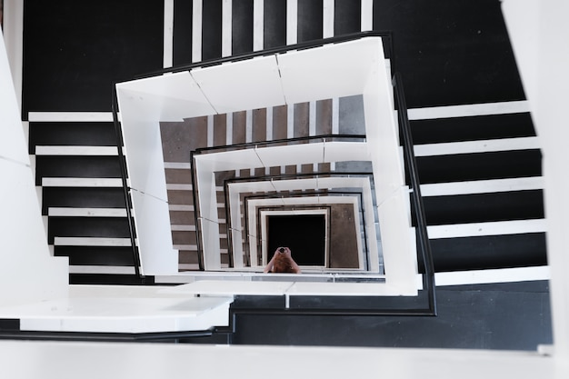 High angle shot of spiral staircases and a female taking a picture during daytime