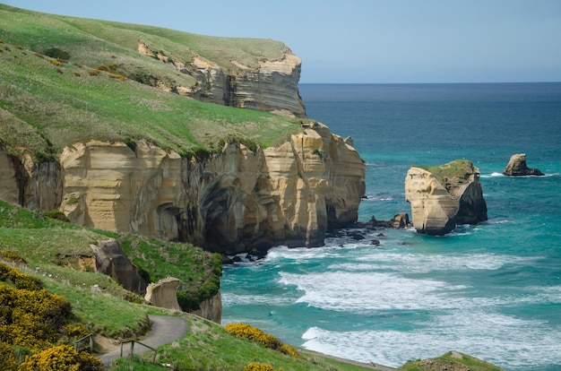 High angle shot of the tunnel beach in dunedin, new zealand