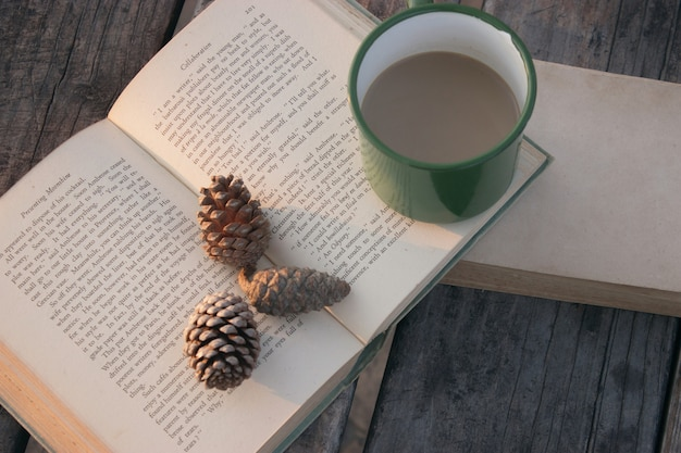 High angle shot of two books with a green coffee mug and pine cones