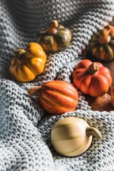 High angle small pumpkins on crocheted blanket
