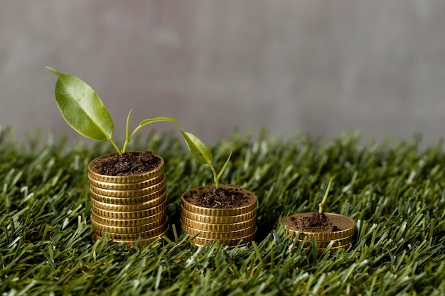 High angle of three stacks of coins on grass with plants and dirt