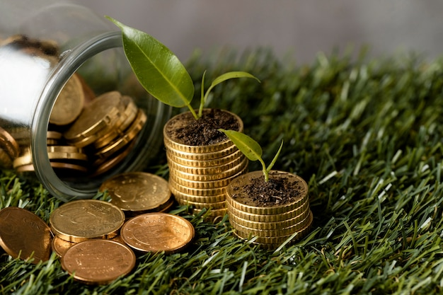 High angle of two stacks of coins on grass with jar and plants
