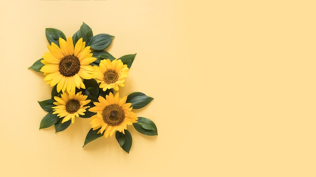High angle view of beautiful sunflowers on yellow surface