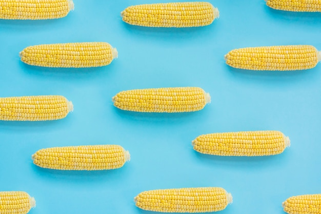 High angle view of corn cobs on blue surface