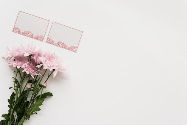 High angle view of decorative blank cards and bunch of pink flowers on white surface