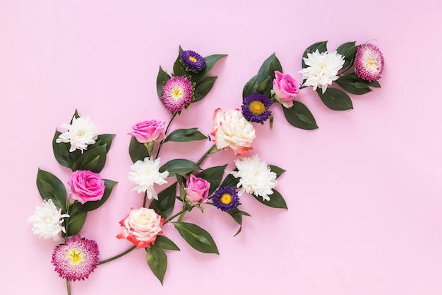 High angle view of fresh flowers on pink background