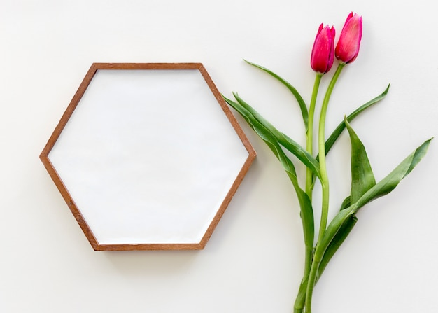 High angle view of hexagon shape picture frame and red tulip flower over white surface