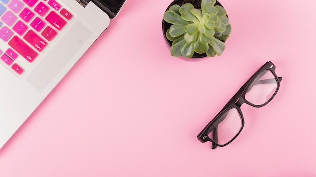 High angle view of laptop; spectacles and potted plant on pink background