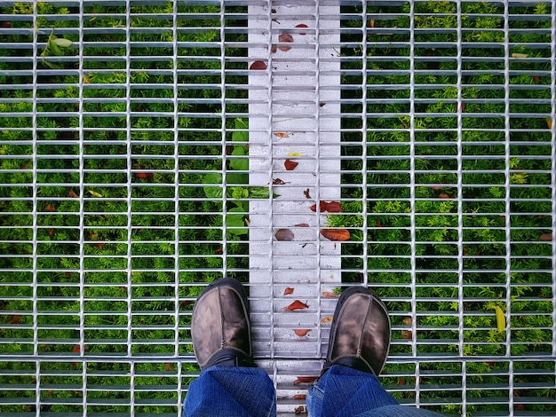High angle view of man in casual clothing standing on metal grate floor with green plants underneath