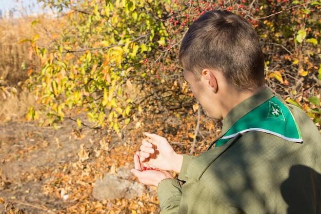 一握りの熟した赤い果実を保持している木から秋のベリーを収集する若いスカウトのハイアングルビュー