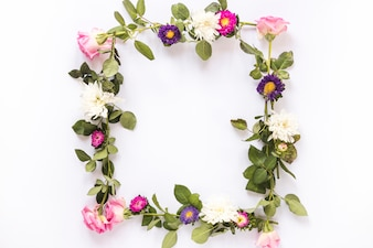 High angle view of beautiful flowers forming frame on white backdrop