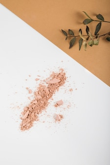 High angle view of face powder and plant on dual colored background