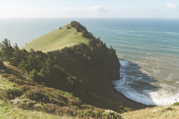 日光の下で海に囲まれた緑に覆われた丘の高角度のビュー