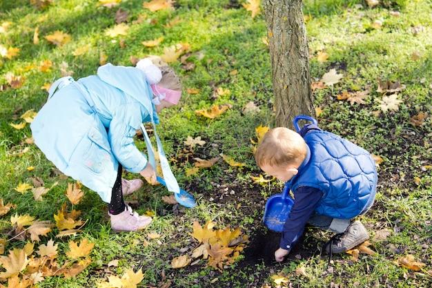잔디에 떨어진 가을이나 가을 잎을 모으는 두 명의 작은 아이들의 높은 각도보기