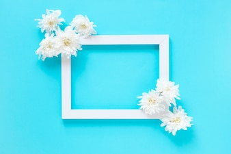 High angle view of white flowers and blank picture frame on blue background