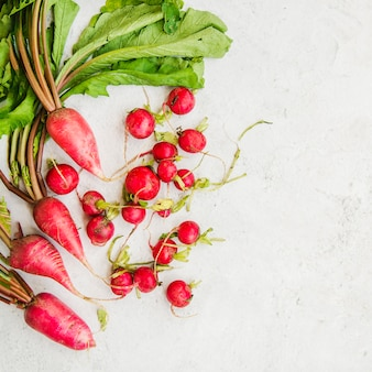 High angle view of red radish root on marble backdrop