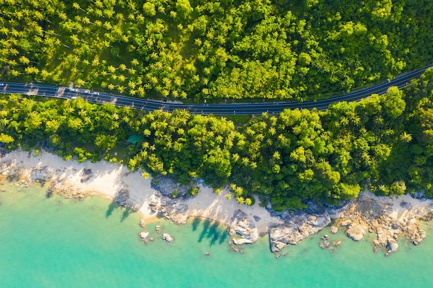 High angle view of road in coconut palm tree forest and coastline