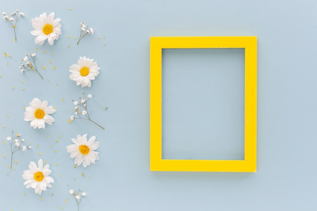 High angle view of white daisy flowers and pollen with yellow boarder blank frame arranged on blue background