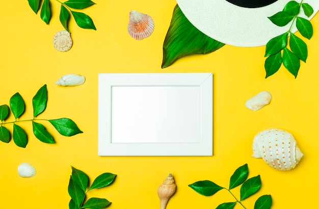 High angle view of a white frame whit green leaf and seashell