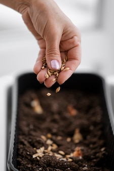High angle of woman spreading seeds on soil in pot
