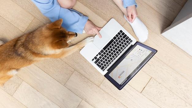 Молодая женщина под высоким углом работает на своем ноутбуке рядом со своей собакой